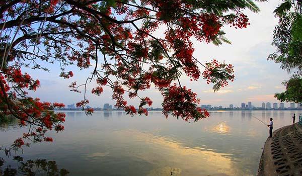 Taxi Nội Bài đi Bưởi Tây Hồ Hà Nội 250.000đ xe 4 chỗ